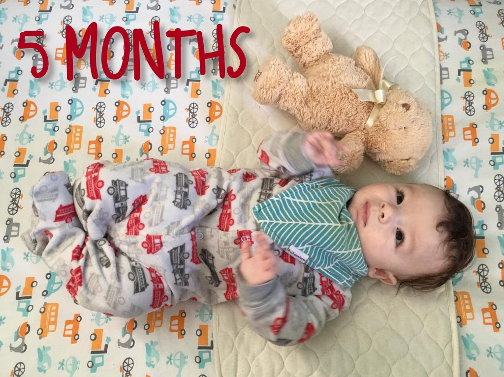 Shiloh is 5 months old